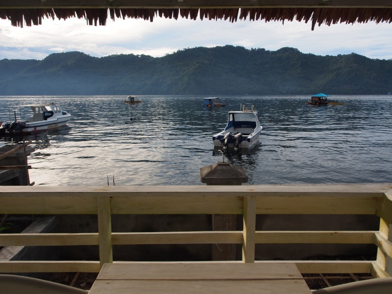 View of Lembeh Island from the balcony.