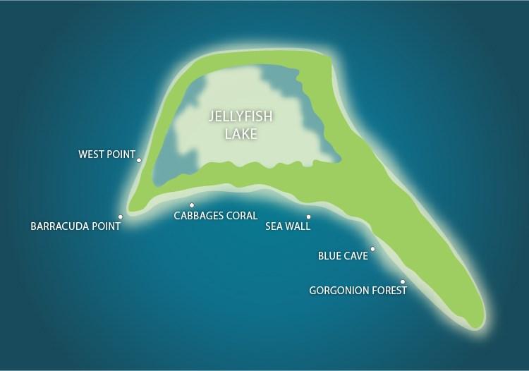 Kakaban Island Dive Sites