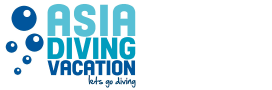 Asia Diving Vacation Blog